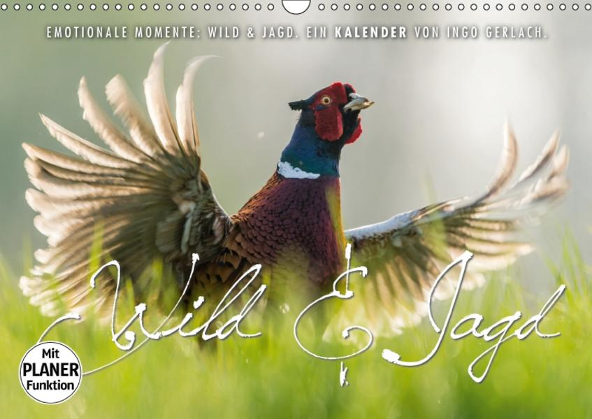 Emotionale Momente: Wild und Jagd. (Wandkalender 2017 DIN A3 quer) - Coverbild