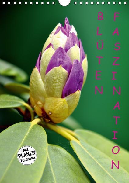 Blüten Faszination (Wandkalender 2017 DIN A4 hoch) - Coverbild