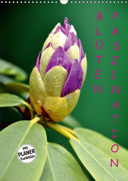 Blüten Faszination (Wandkalender 2017 DIN A3 hoch) - Coverbild