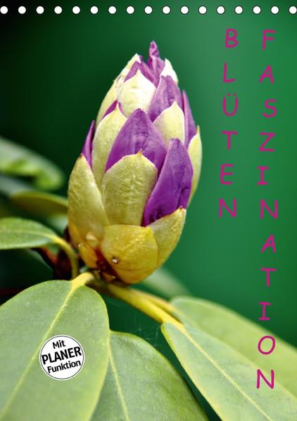 Blüten Faszination (Tischkalender 2017 DIN A5 hoch) - Coverbild