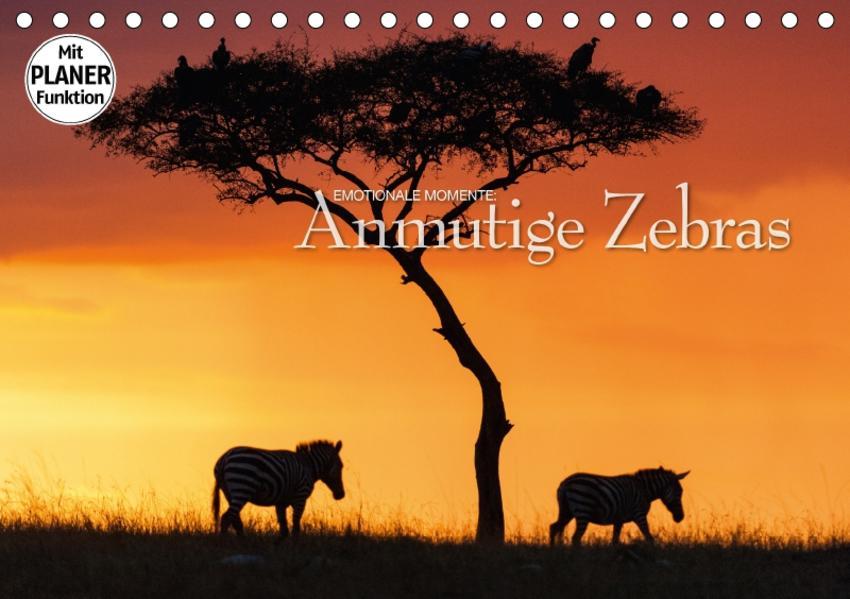 Emotionale Momente: Anmutige Zebras (Tischkalender 2017 DIN A5 quer) - Coverbild
