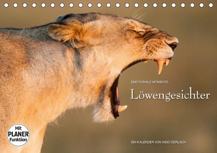 Emotionale Momente: Löwengesichter (Tischkalender 2017 DIN A5 quer) - Coverbild