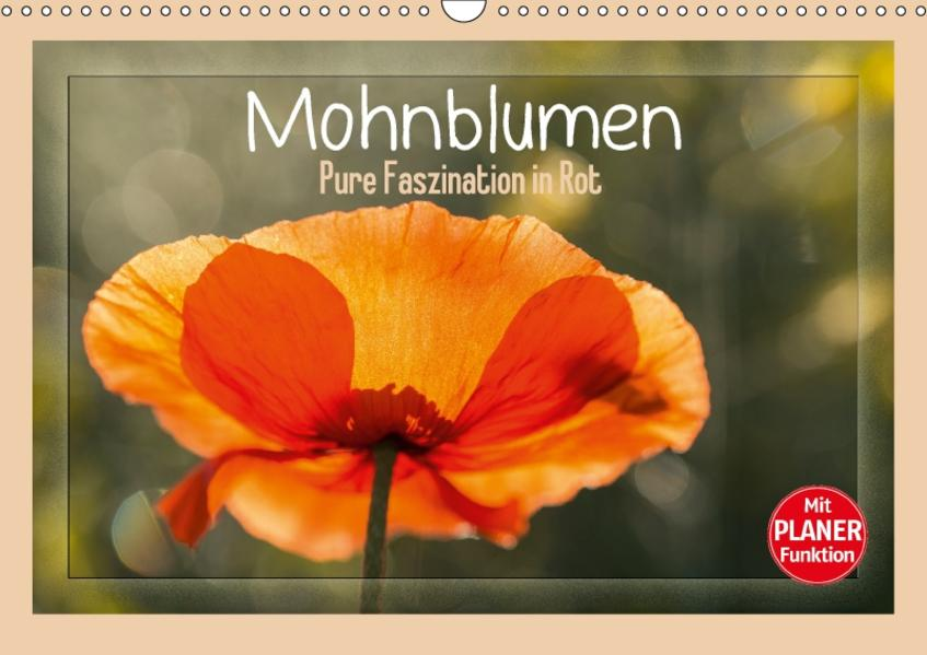 Mohnblumen – Pure Faszination in Rot (Wandkalender 2017 DIN A3 quer) - Coverbild