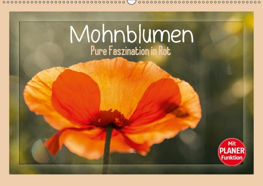 Mohnblumen – Pure Faszination in Rot (Wandkalender 2017 DIN A2 quer) - Coverbild