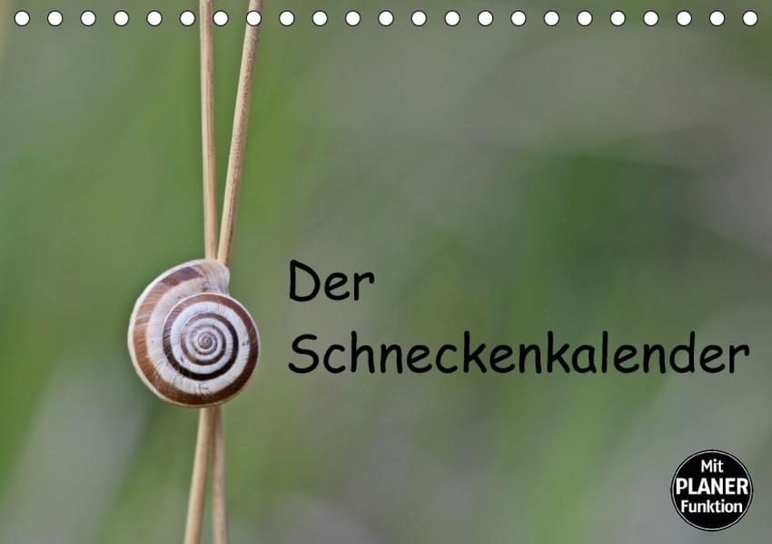 Der Schneckenkalender (Tischkalender 2017 DIN A5 quer) - Coverbild