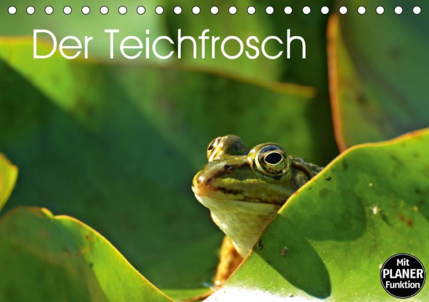 Der Teichfrosch (Tischkalender 2017 DIN A5 quer) - Coverbild