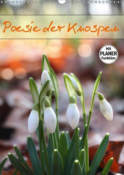 Poesie der Knospen (Wandkalender 2017 DIN A3 hoch) - Coverbild