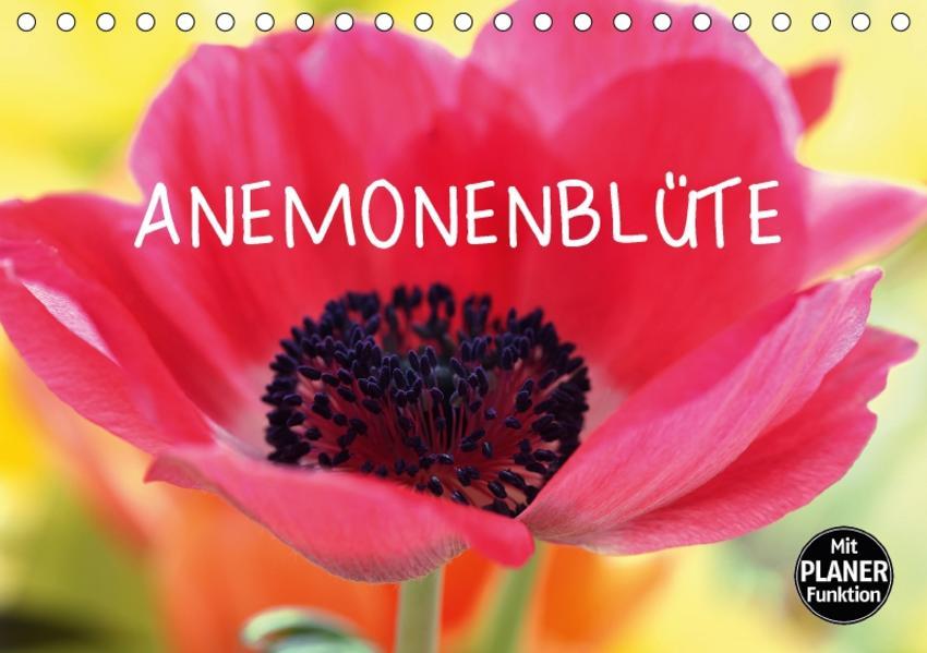 Anemonenblüte (Tischkalender 2017 DIN A5 quer) - Coverbild