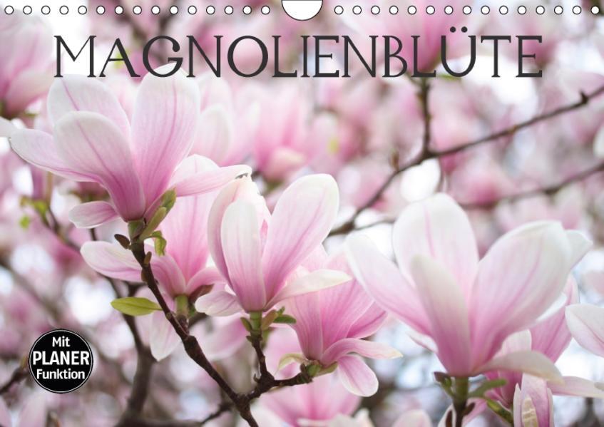 Magnolienblüte (Wandkalender 2017 DIN A4 quer) - Coverbild