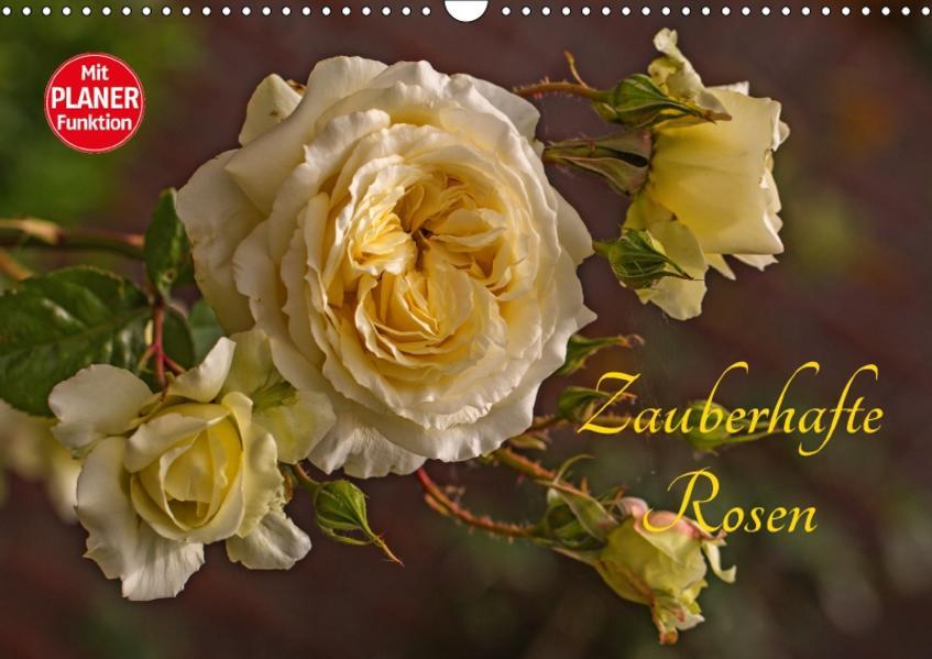 Zauberhafte Rosen (Wandkalender 2017 DIN A3 quer) - Coverbild
