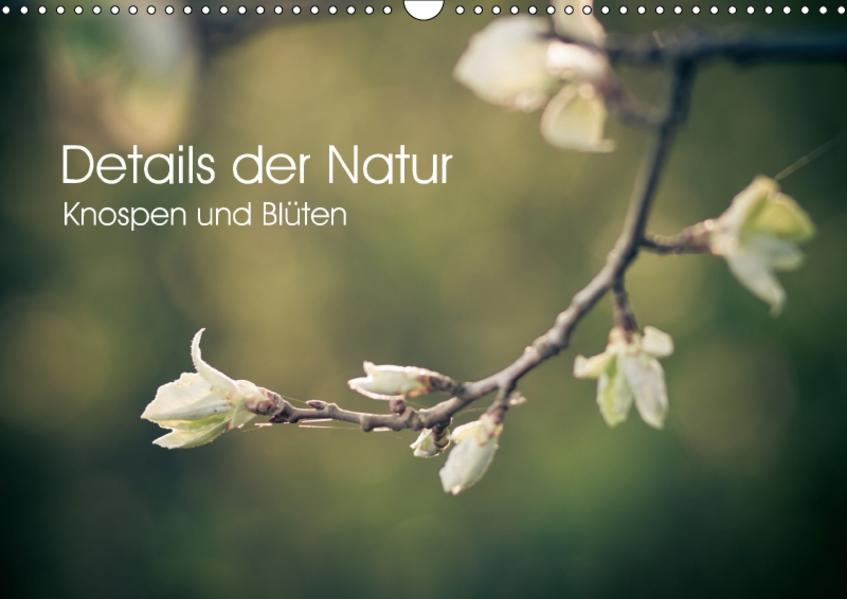 Details der Natur - Knospen und Blüten (Wandkalender 2017 DIN A3 quer) - Coverbild