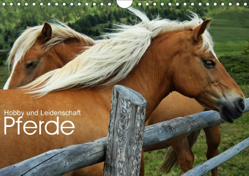 Pferde - Hobby und Leidenschaft (Wandkalender 2017 DIN A4 quer) - Coverbild