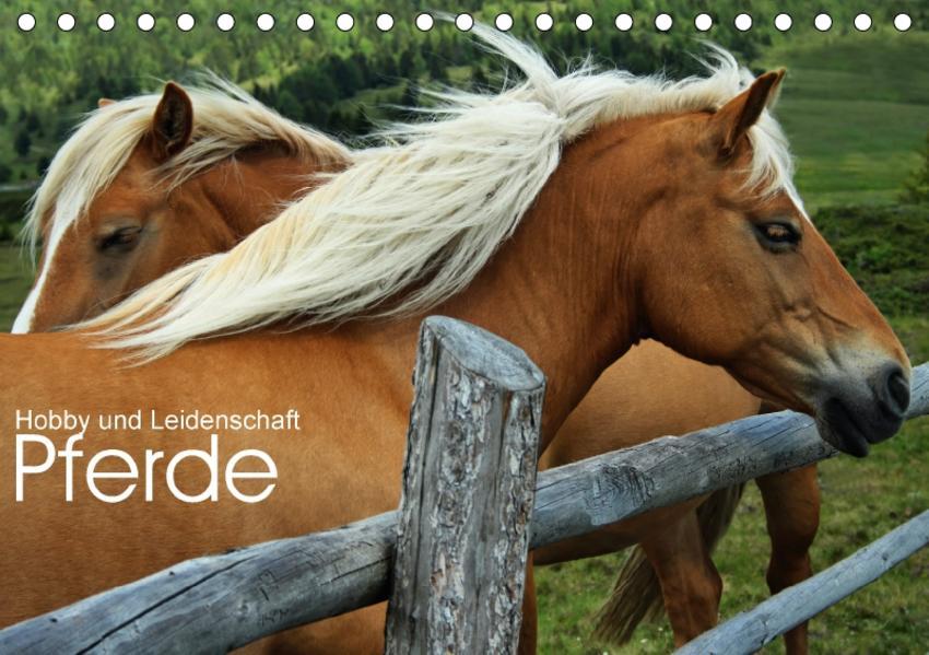 Pferde - Hobby und Leidenschaft (Tischkalender 2017 DIN A5 quer) - Coverbild
