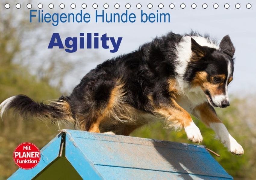 Fliegende Hunde beim Agility (Tischkalender 2017 DIN A5 quer) - Coverbild