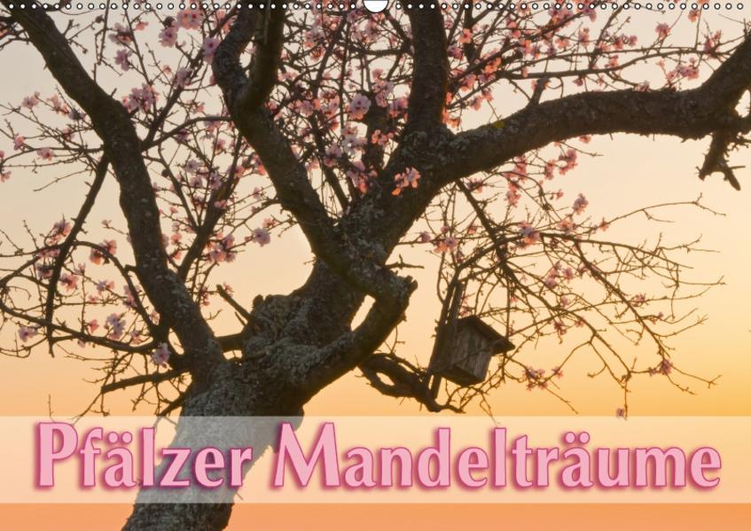Pfälzer Mandelträume (Wandkalender 2017 DIN A2 quer) - Coverbild