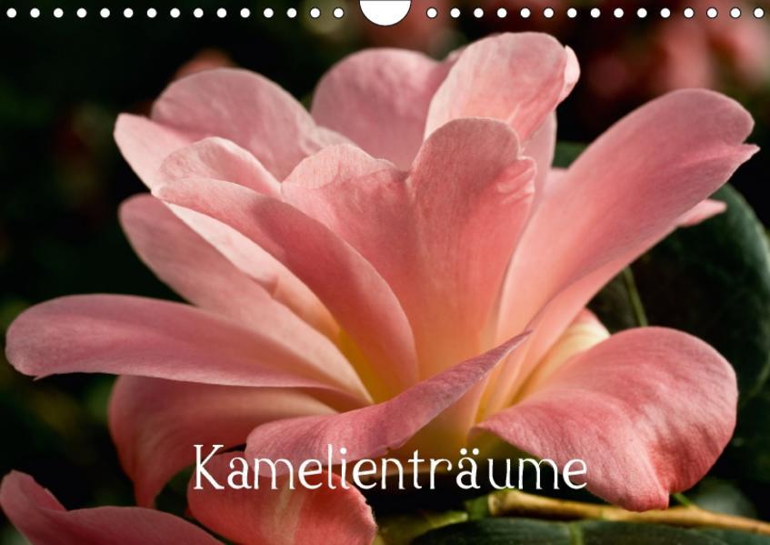 Kamelienträume (Wandkalender 2017 DIN A4 quer) - Coverbild