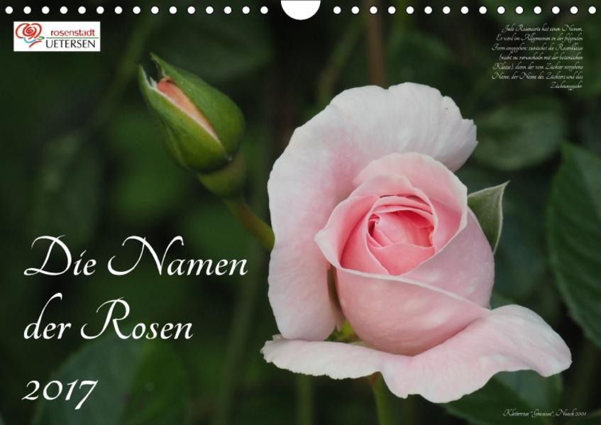 Die Namen der Rosen (Wandkalender 2017 DIN A4 quer) - Coverbild
