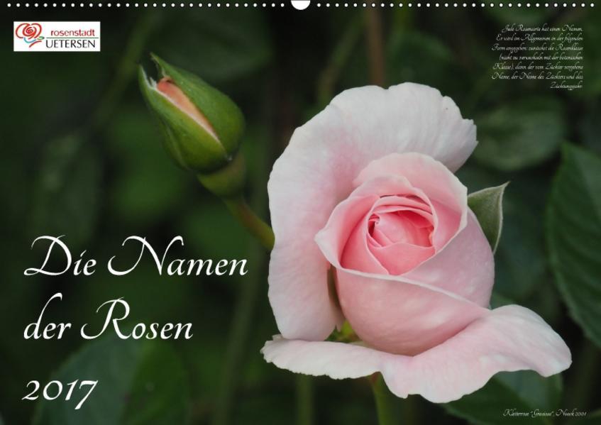 Die Namen der Rosen (Wandkalender 2017 DIN A2 quer) - Coverbild
