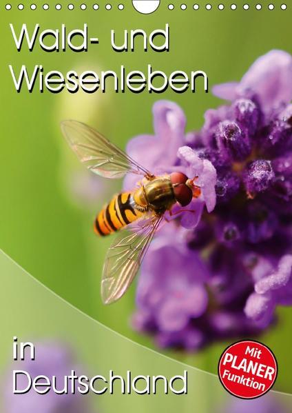 Wald- und Wiesenleben in Deutschland (Wandkalender 2017 DIN A4 hoch) - Coverbild
