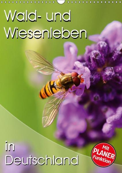 Wald- und Wiesenleben in Deutschland (Wandkalender 2017 DIN A3 hoch) - Coverbild