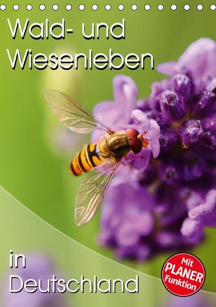 Wald- und Wiesenleben in Deutschland (Tischkalender 2017 DIN A5 hoch) - Coverbild
