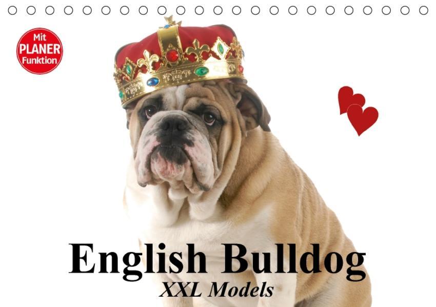 English Bulldog XXL Models (Tischkalender 2017 DIN A5 quer) - Coverbild