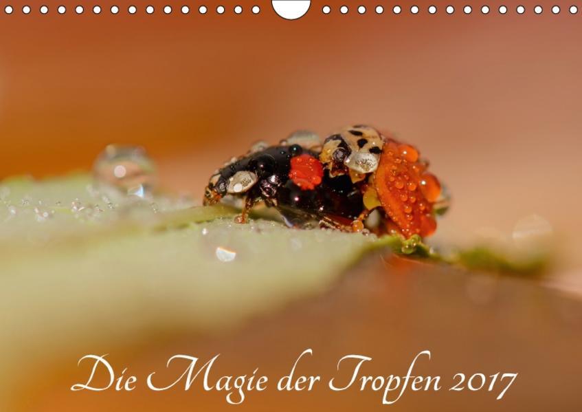 Die Magie der Tropfen 2017 (Wandkalender 2017 DIN A4 quer) - Coverbild