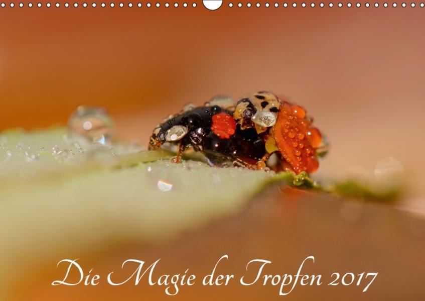 Die Magie der Tropfen 2017 (Wandkalender 2017 DIN A3 quer) - Coverbild