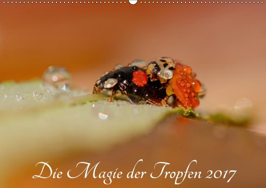 Die Magie der Tropfen 2017 (Wandkalender 2017 DIN A2 quer) - Coverbild