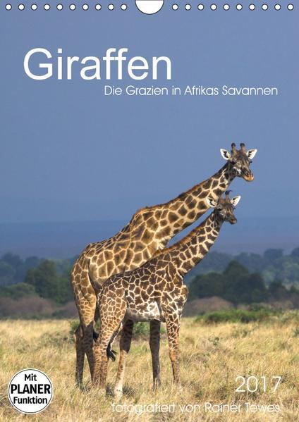 Giraffen - Die Grazien in Afrikas Savannen (Wandkalender 2017 DIN A4 hoch) - Coverbild