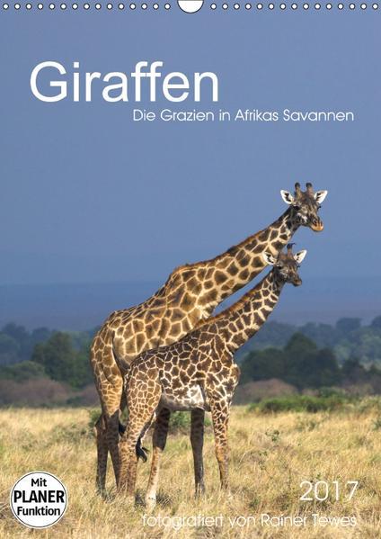 Giraffen - Die Grazien in Afrikas Savannen (Wandkalender 2017 DIN A3 hoch) - Coverbild