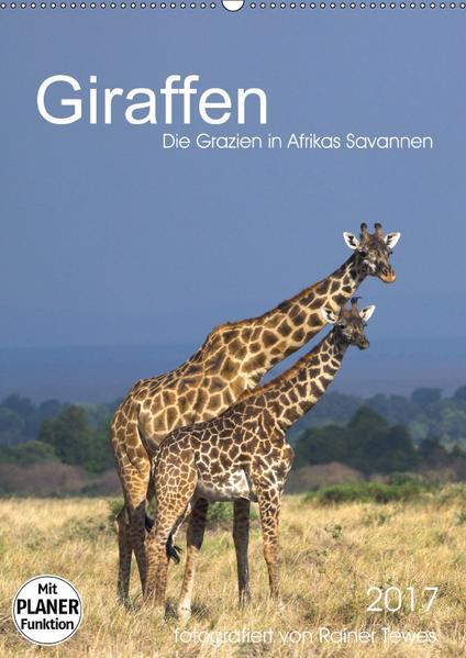 Giraffen - Die Grazien in Afrikas Savannen (Wandkalender 2017 DIN A2 hoch) - Coverbild