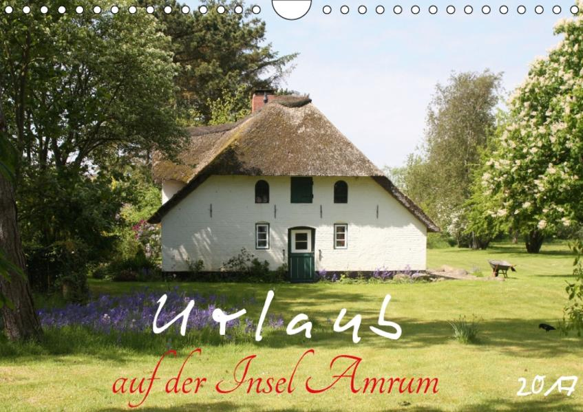 Urlaub auf der Insel Amrum (Wandkalender 2017 DIN A4 quer) - Coverbild