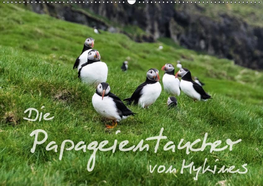 Die Papageientaucher von Mykines (Wandkalender 2017 DIN A2 quer) - Coverbild