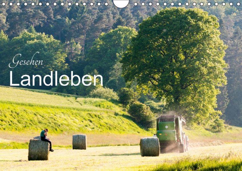 Gesehen - Landleben (Wandkalender 2017 DIN A4 quer) - Coverbild