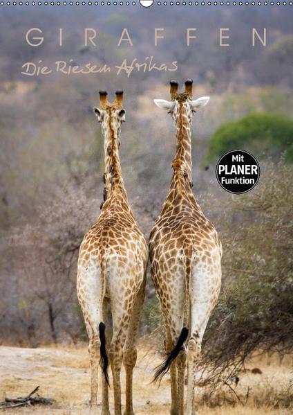 Giraffen - Die Riesen Afrikas (Wandkalender 2017 DIN A2 hoch) - Coverbild