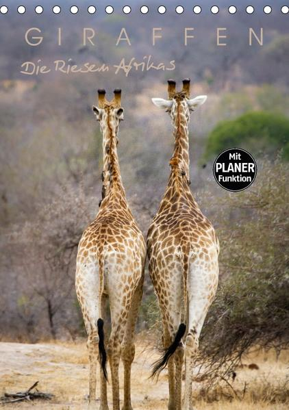 Giraffen - Die Riesen Afrikas (Tischkalender 2017 DIN A5 hoch) - Coverbild