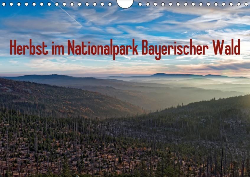 Herbst im Nationalpark Bayerischer Wald (Wandkalender 2017 DIN A4 quer) - Coverbild