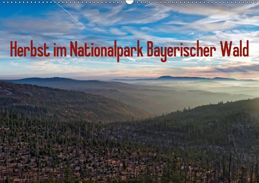 Herbst im Nationalpark Bayerischer Wald (Wandkalender 2017 DIN A2 quer) - Coverbild