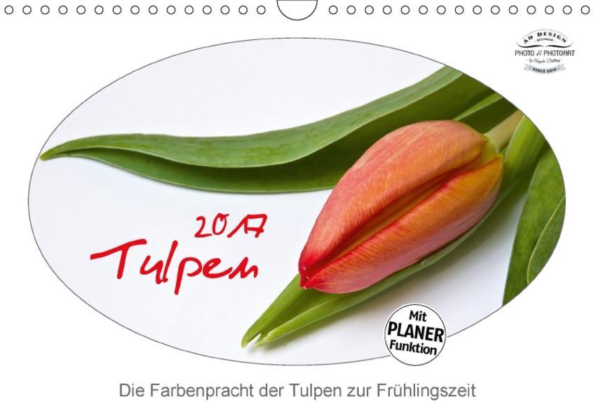 Tulpen (Wandkalender 2017 DIN A4 quer) - Coverbild