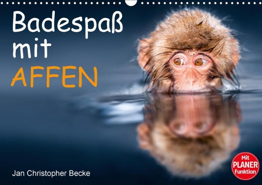 Badespaß mit Affen (Wandkalender 2017 DIN A3 quer) - Coverbild