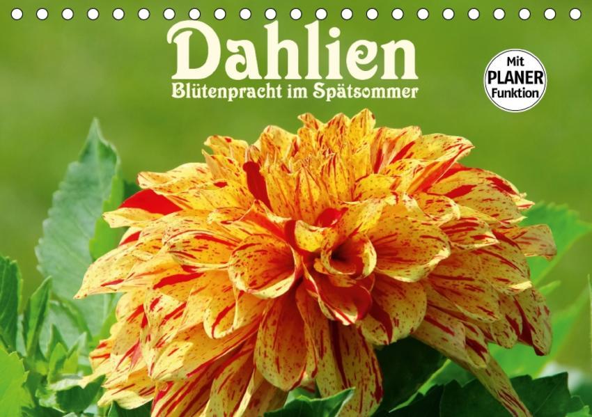Dahlien - Blütenpracht im Spätsommer (Tischkalender 2017 DIN A5 quer) - Coverbild