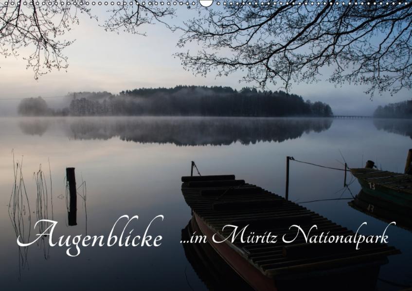 Augenblicke im Müritz Nationalpark (Wandkalender 2017 DIN A2 quer) - Coverbild