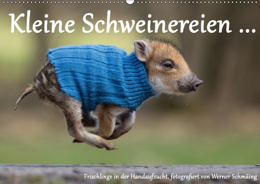 Kleine Schweinereien (Wandkalender 2017 DIN A2 quer) - Coverbild