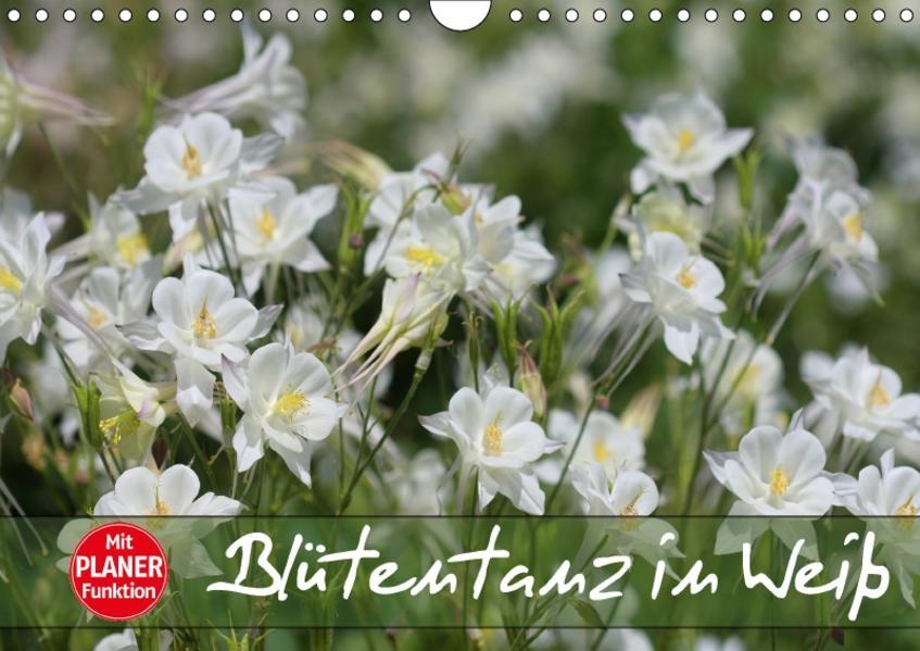 Blütentanz in Weiß (Wandkalender 2017 DIN A4 quer) - Coverbild