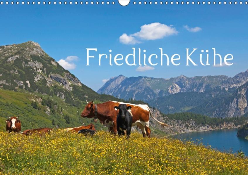 Friedliche Kühe (Wandkalender 2017 DIN A3 quer) - Coverbild
