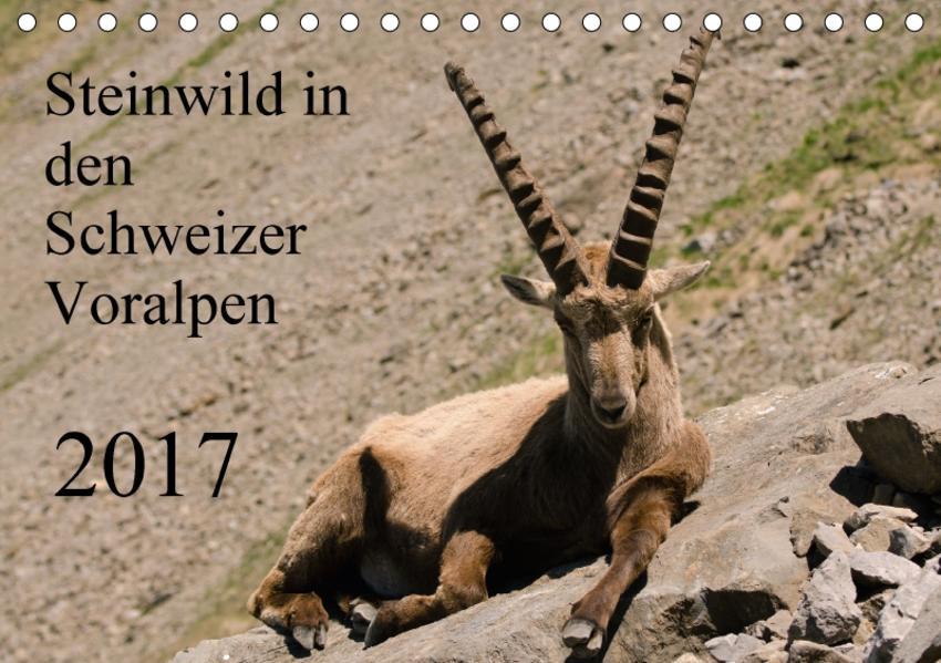 Steinwild in den Schweizer Voralpen (Tischkalender 2017 DIN A5 quer) - Coverbild