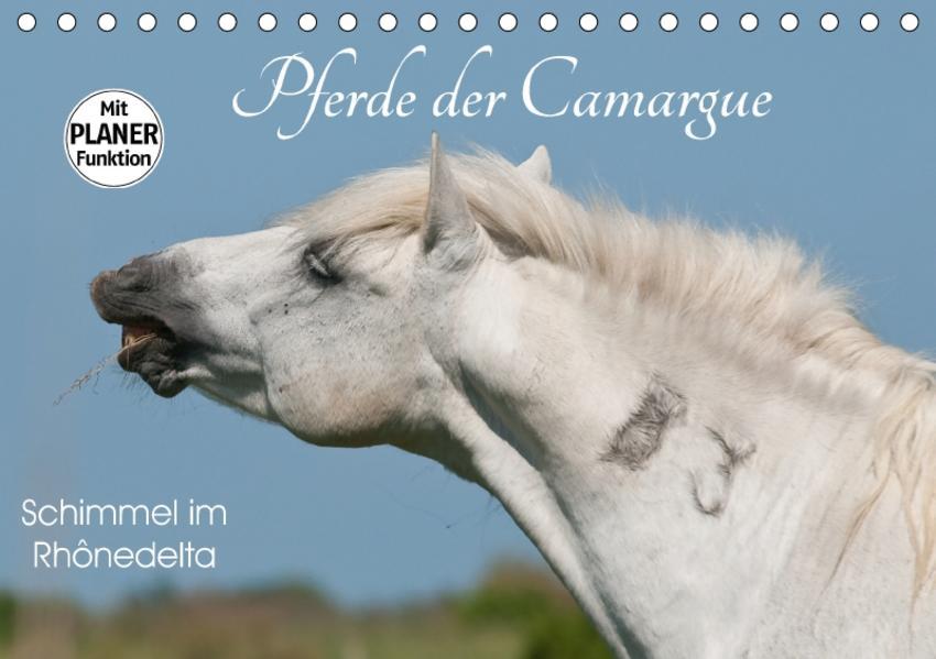 Pferde der Camargue – Schimmel im Rhônedelta (Tischkalender 2017 DIN A5 quer) - Coverbild