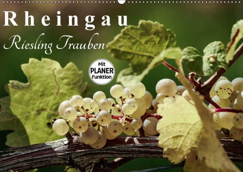 Rheingau - Riesling Trauben (Wandkalender 2017 DIN A2 quer) - Coverbild