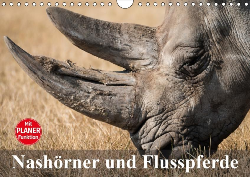 Nashörner und Flusspferde (Wandkalender 2017 DIN A4 quer) - Coverbild
